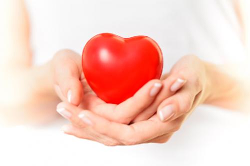 tác dụng của đông trùng hạ thảo đối với tim mạch